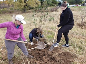 Volunteers planting trees at Prairie Moraine County Park